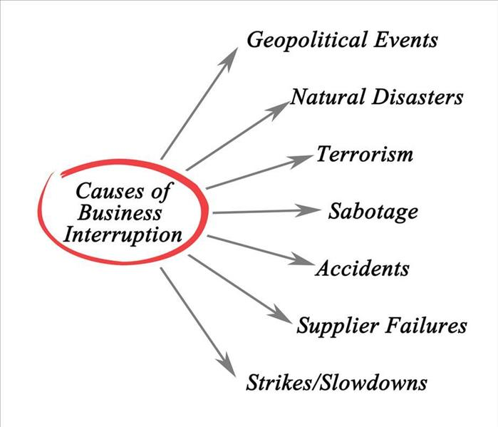 Causes of business interruption