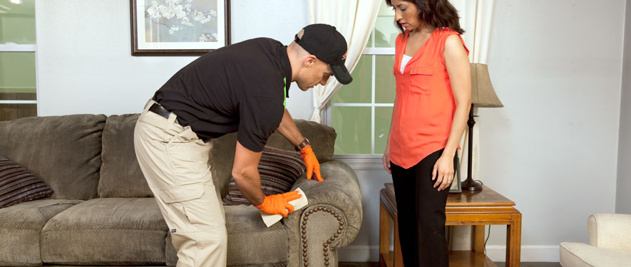Whittier, CA carpet upholstery cleaning