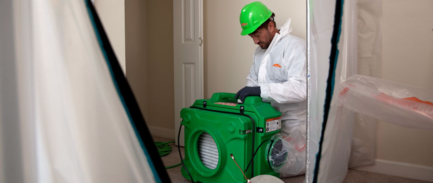 East Los Angeles, CA mold cleanup