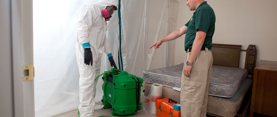 Whittier, CA mold removal process